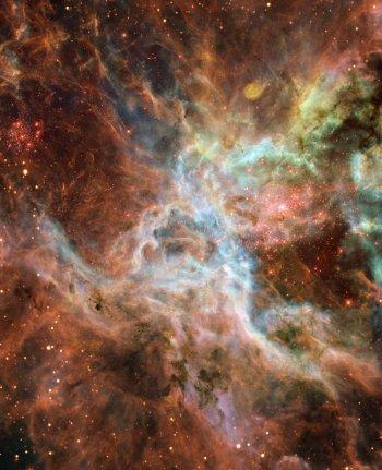 Extragalactic stars