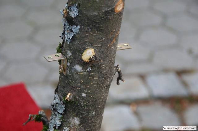 Haushaltstipps einen kratzbaum naturkratzbaum f r - Lightbox buchstaben selber machen ...